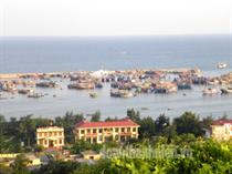 Nuôi và sản xuất giống bào ngư - Bước đột phá phát triển kinh tế ở Đảo Thanh niên Bạch Long Vĩ